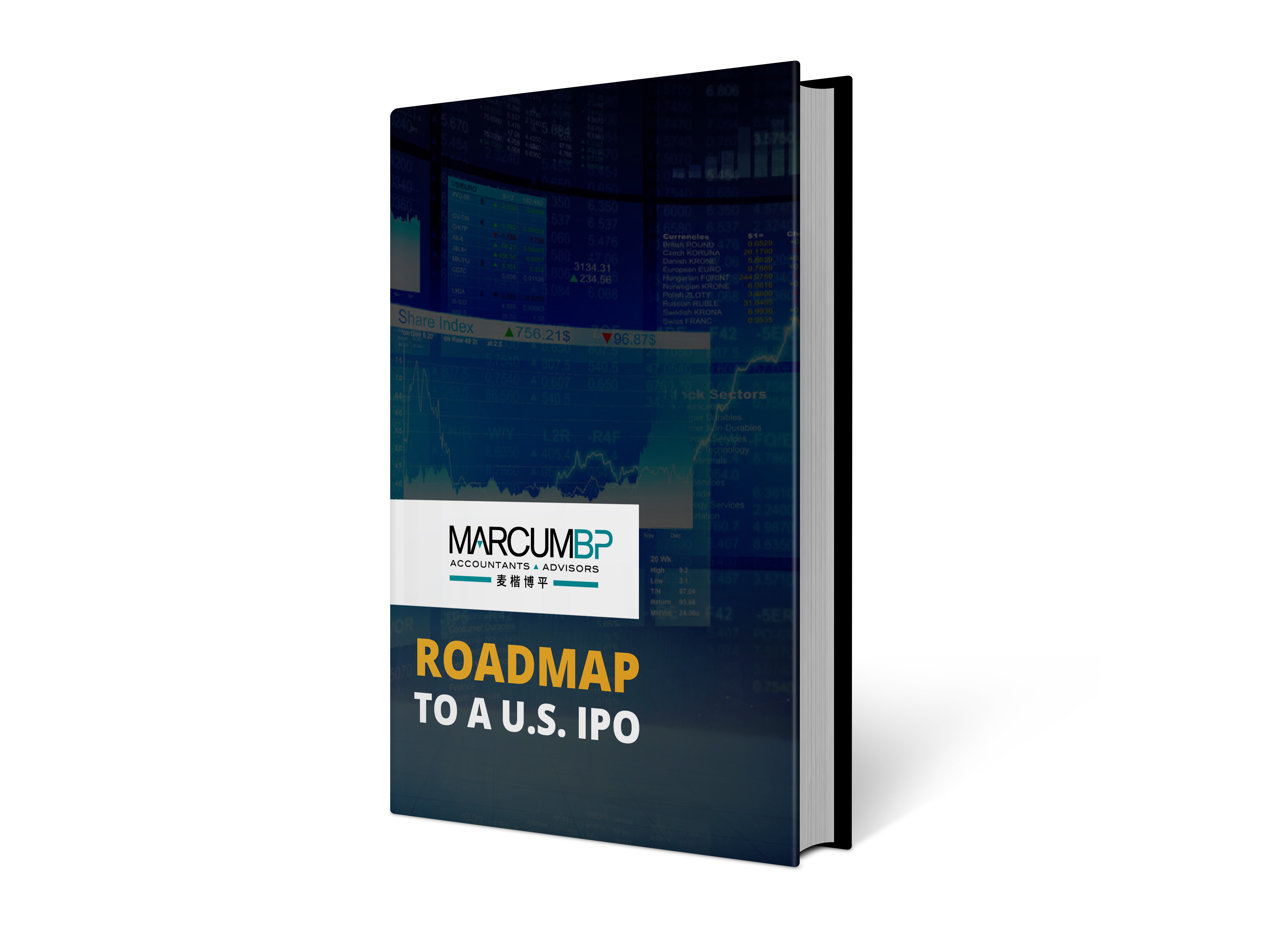 ROADMAP TO A US IPO BOOK MOCK UP-2.png